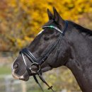 Horse Passion Trensenzaum Ashley VB